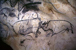 charcoal drawings from the Cave of Chauvet-Pont-d'Arc in France
