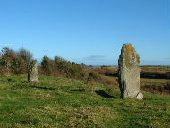 Standing Stones at Baltray on the Boyne estuary
